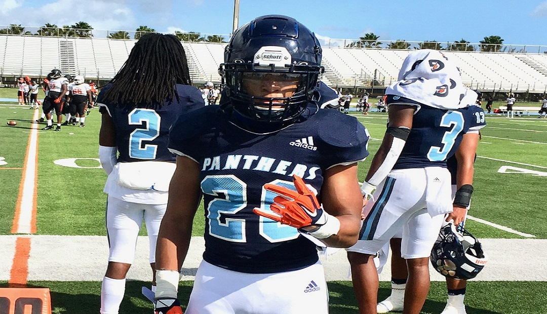SPRING FOCUS – Palmetto Will Once Again Be In The 8A Mix